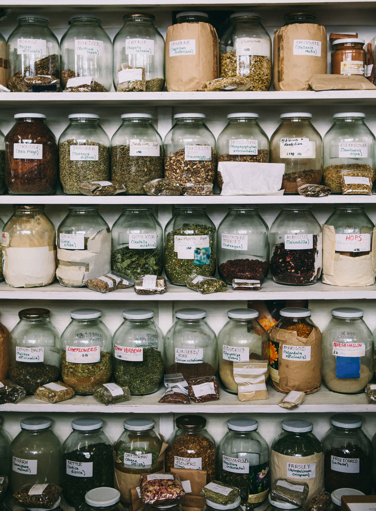 The Pros and Cons of Having an Herbal Abortion - VICE