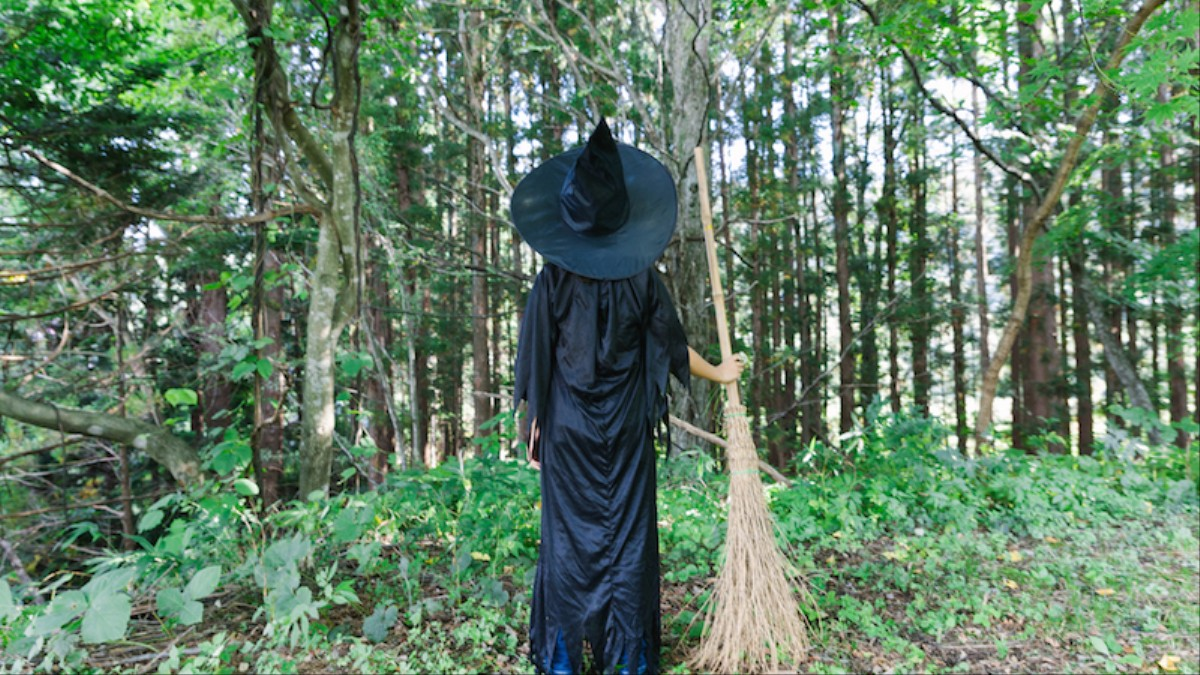 A Teen Witch S Guide To Staying Alive Broadly