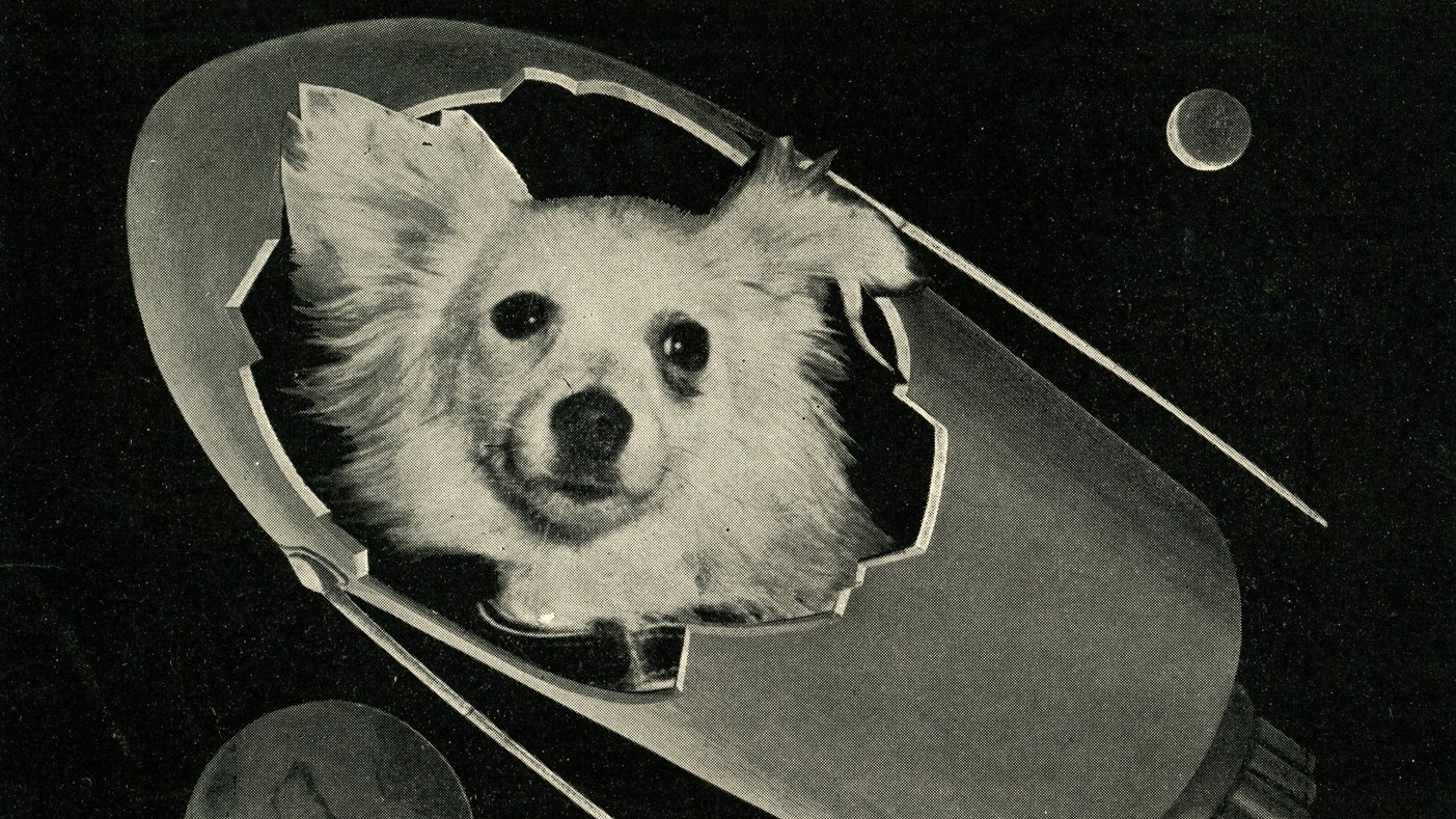 Bitches in Space: Remembering Soviet Russia's Fleet of Female Dog Cosmonauts