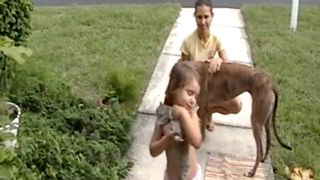 Watch: Little Girl Befriends Dead Squirrel That Her Dog Killed