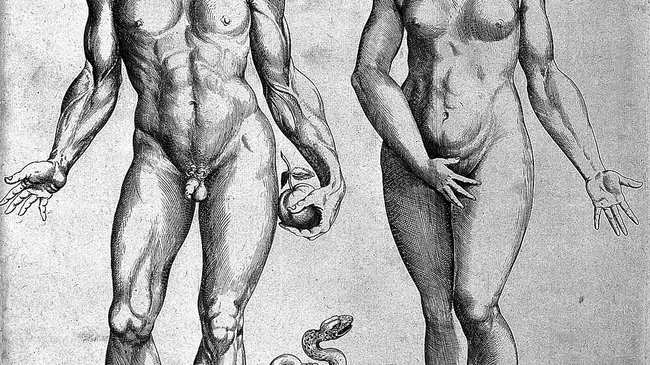 Zelfgemaakte rijpe anale seks